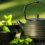 Epigalokatechin galát – těžký kalibr proti nadbytečnému tuku a opotřebení organismu