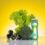 Jak i při rostlinné stravě pohlídat dostatečný příjem vitamínů a minerálů?