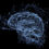 Nootropika jako prostředky pro neurohacking, díl 5. – Fosfatidylserin